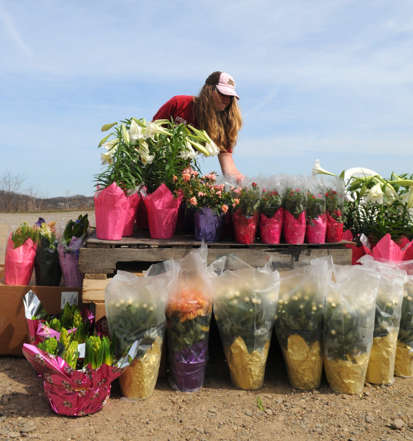Laura Crist sells flowers along route 356 in Buffalo Township. By Steven Dietz, Tribune-Review.