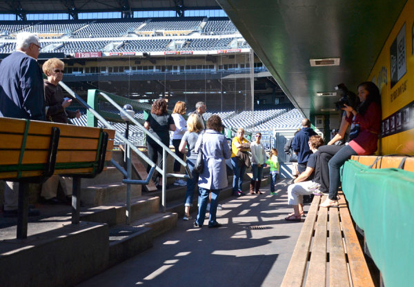 PNC Park tour participants look out from the Pirates dugout on Sept. 24, 2014.  Photo: Haley Wisniewski | Point Park News Service