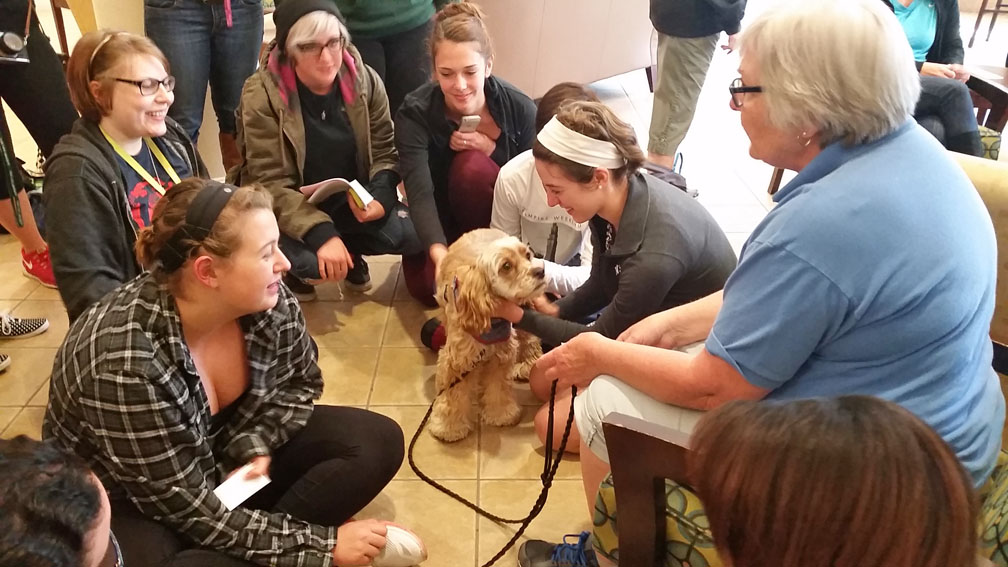 dog therapy thesis David paul's thesis on the role therapy dogs can play in mediation was published by the harvard negotiation law review.