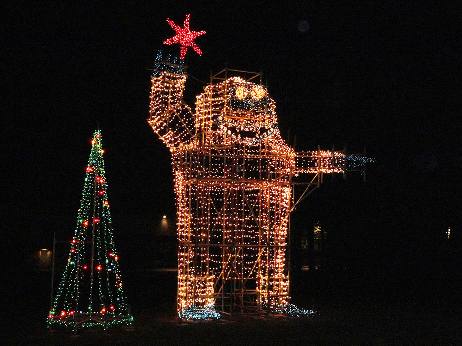 Company dazzles Zelienople with holiday lights display : Point ...